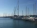 Die Elas im Hafen